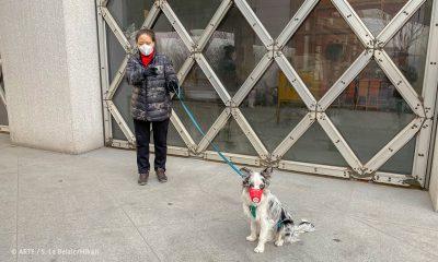 "Filmstill aus ""China-Tagebuch in Quarantäne"": Frau mit Hund"